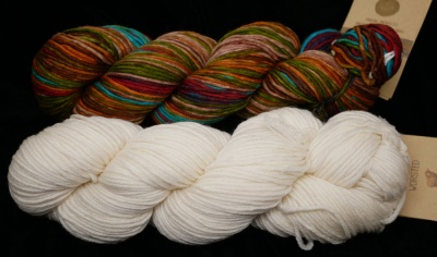 Kit B: one skein of 4002 plus one of cream