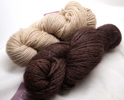 Orphan Skeins:  Canopy Worsted -