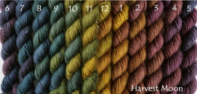 And the warmer Harvest Moon colorway, lined up.  The numbers show the order in which they move one color to the next if you knit them as they were dyed.