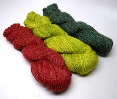 Orphan Skeins:  Canopy Fingering - Fingering/Sock weight