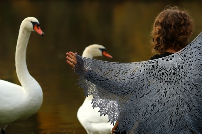 Wild Swan/ Beaded Kits/ Pre-Orders/ Free Pattern - KALs