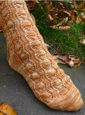 Acorn Stash Sock/ Pattern - Socks
