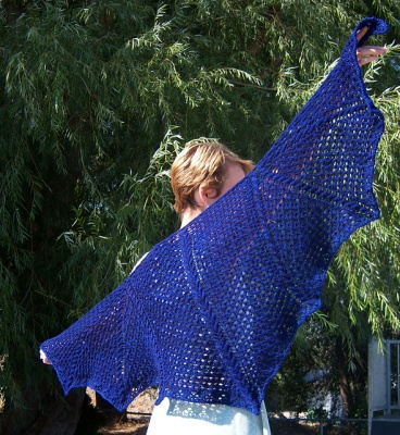 Dragon's Flight Shawl/ Pattern by Abbey Phelps - Shawls/Stoles